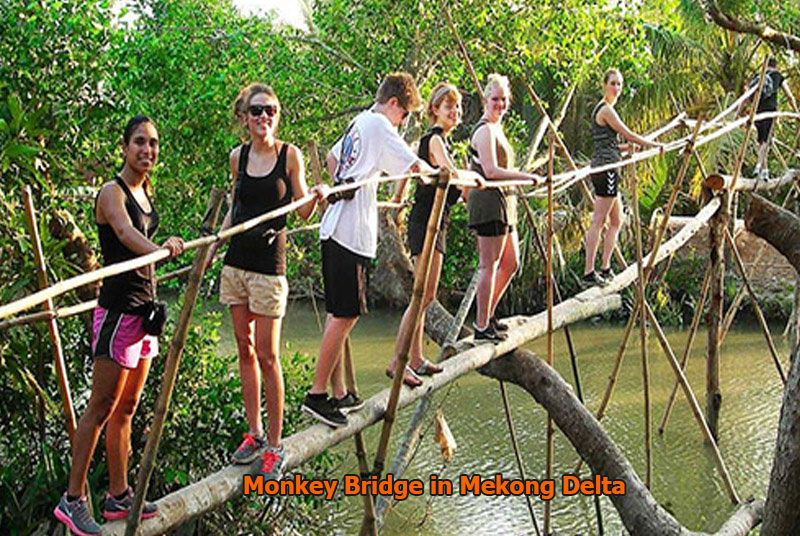 Monkey Bridge in Mekong